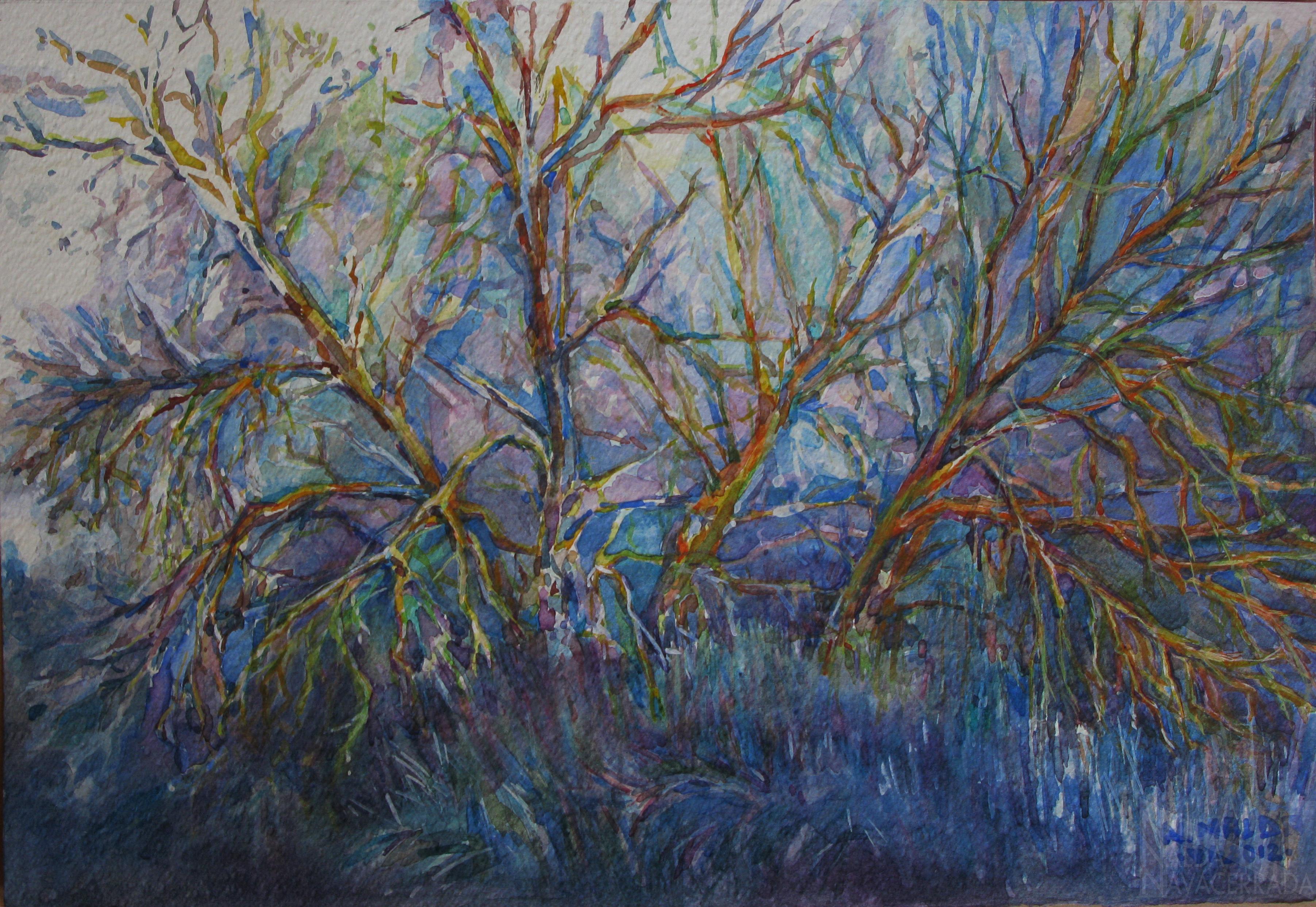 017-2012-Arboles Azules